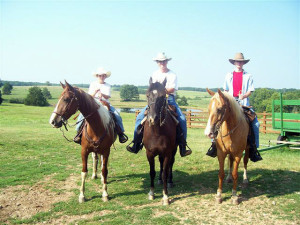 RS RANCH Trai Ride Horses