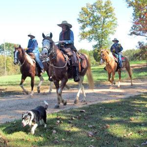 Missouri Fox-trot Ride